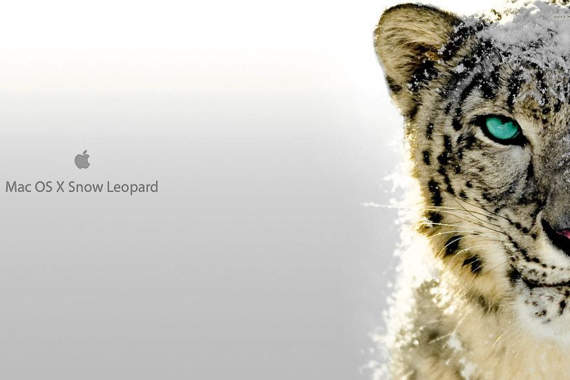 Snow Leopard Mac OS X HD Desktop Mobile Wallpaper Background - 9walls
