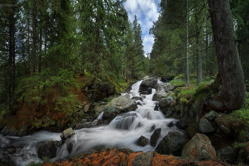 skakavica waterfall rila national park bulgaria rila national park bulgaria  waterfall forest
