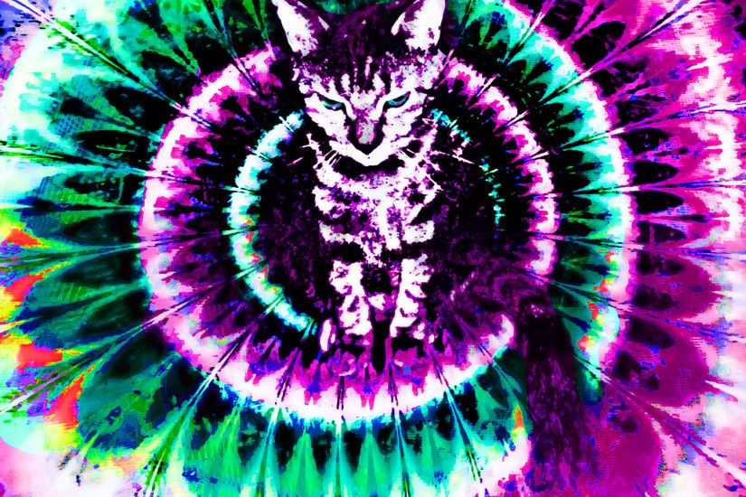 Showing Gallery For Trippy Cat Wallpaper Hd