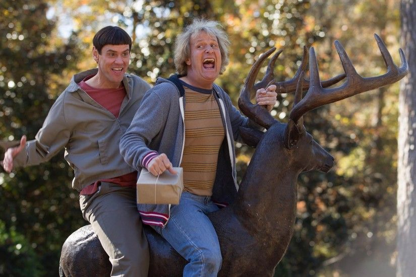 dumb and dumber 2 dumb and dumber to jim carrey jim carrey lloyd christmas  jeff daniels