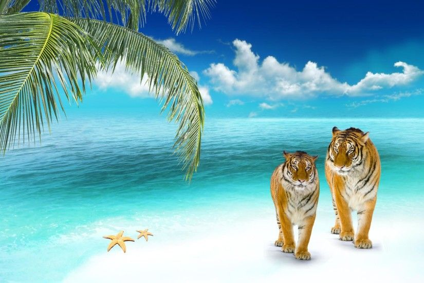 Beach wallpapers Tigers on a tropical beach Wallpaper