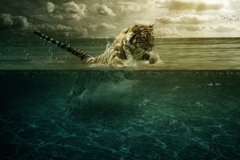 Amazing Tiger Wonderful Wallpaper