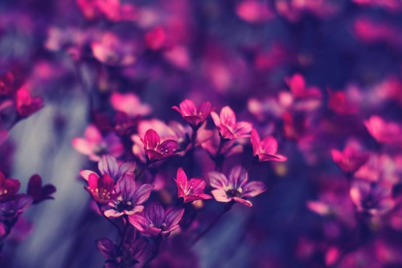 32 Cool Backgrounds Tumblr Download Free Hd Wallpapers For