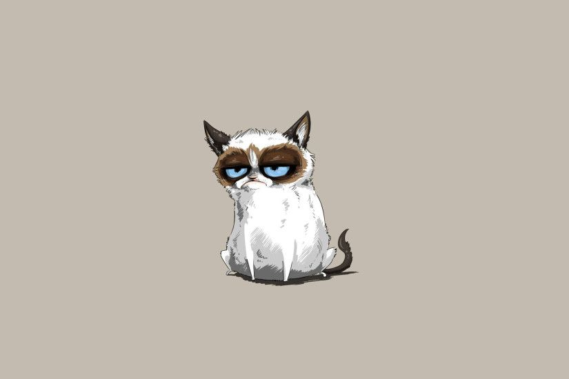 Grumpy Cat Minimalism HD Wallpaper