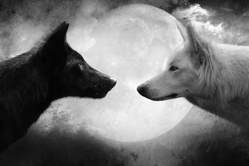 Black-White-Love-Dog-Moon-Wallpaper-HD