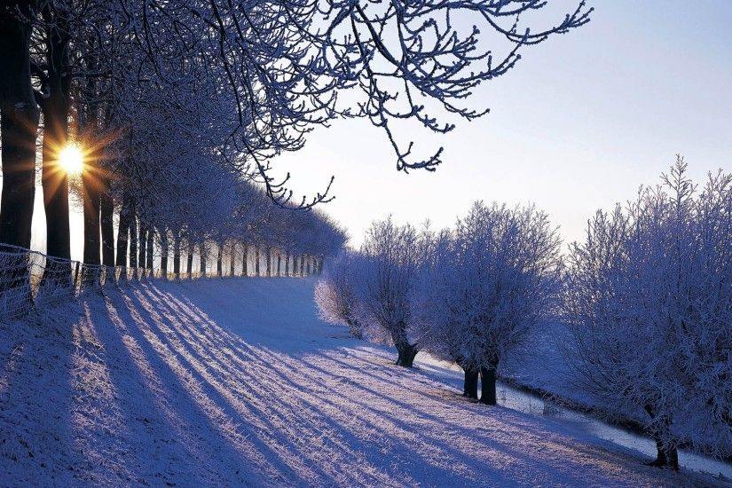 Winter Nature Wallpaper High Quality Resolution ...