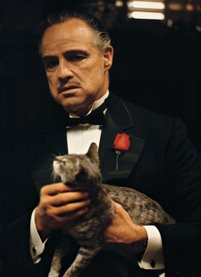 HD Quality Wallpaper | Collection: Video Game, 1640x2258 The Godfather