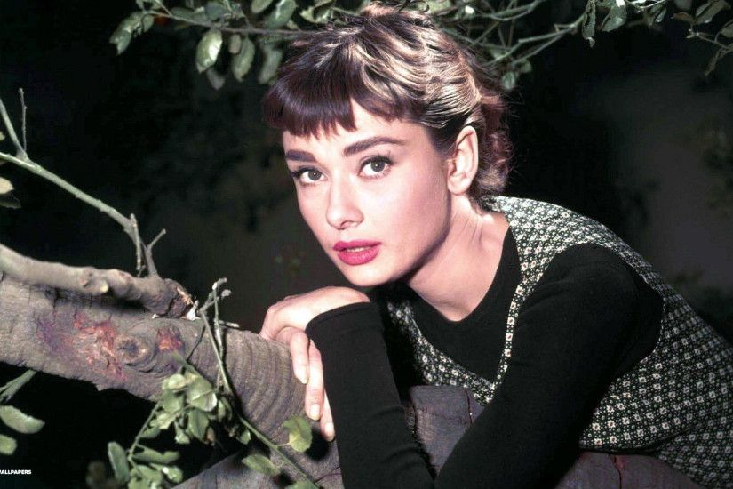audrey hepburn in color background
