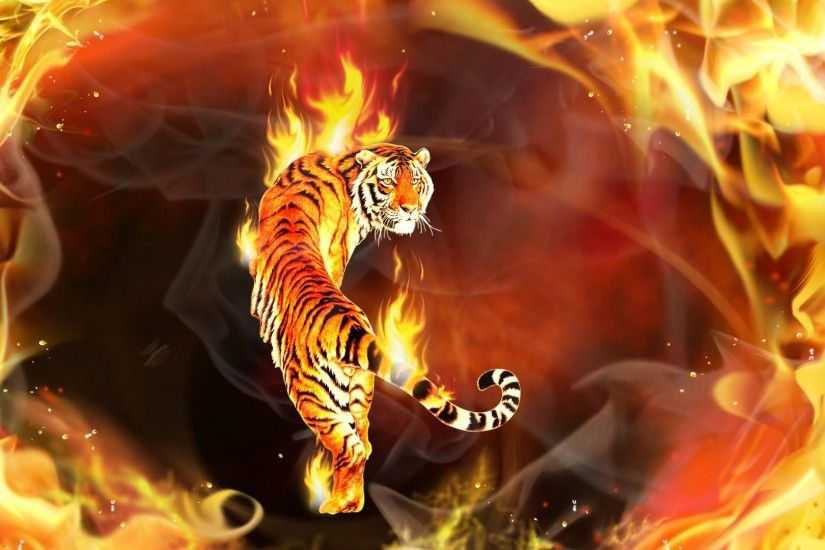 images about wallpaper screensaver on Pinterest Abstract 1920×1080 Tiger  Wallpapers Free (56 Wallpapers