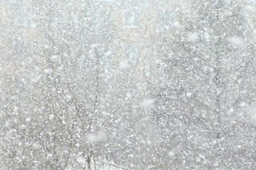 Real Snow Background, large flakes of snow create a winter background Stock  Video Footage - VideoBlocks
