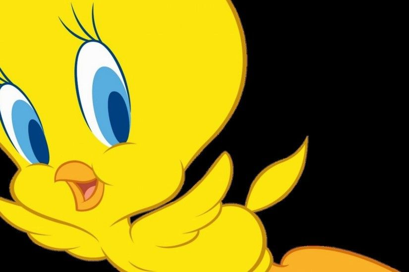 Tweety bird backgrounds tweety hd images get free top quality tweety hd images for your desktop pc background voltagebd Images