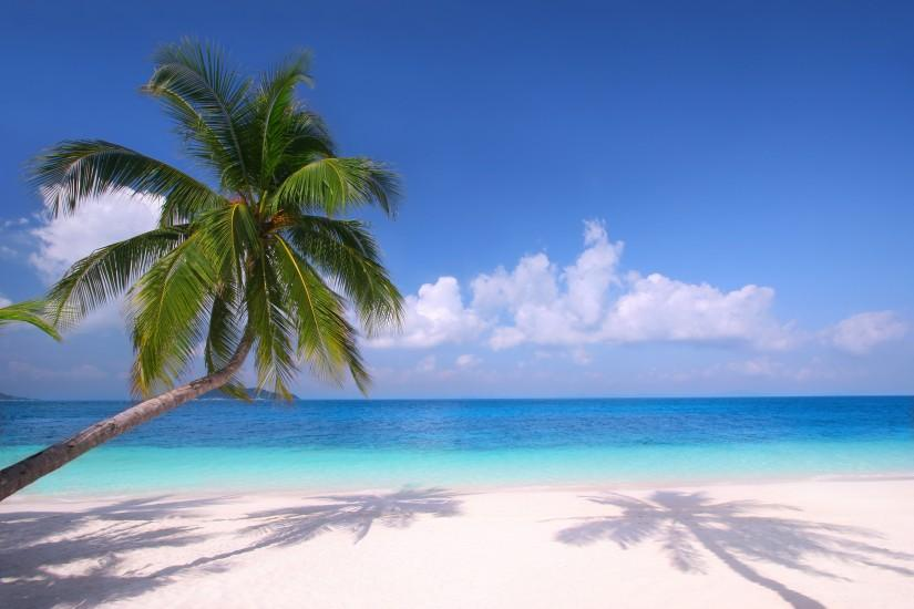 most popular beach background 3500x2333 retina