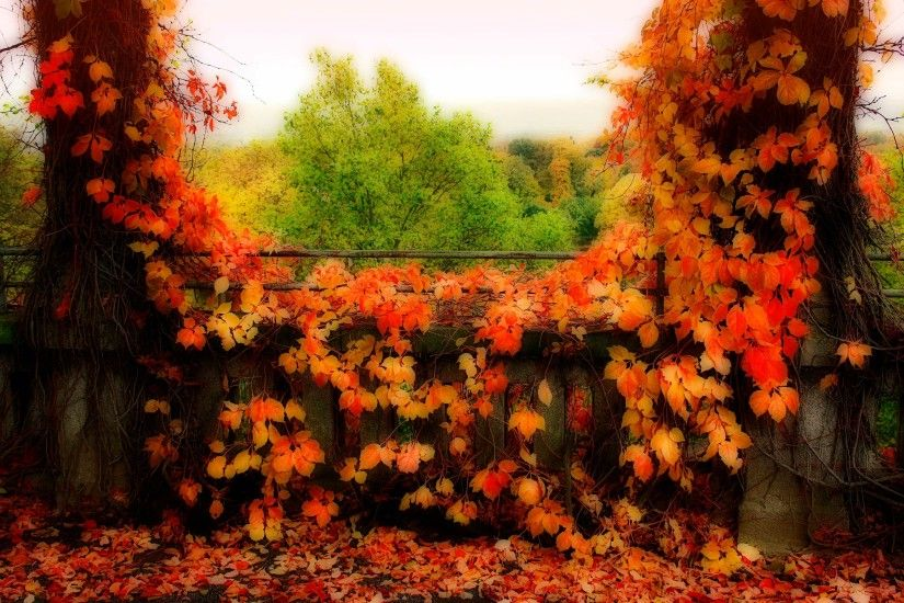 fall desktop backgrounds wallpaper - fall category