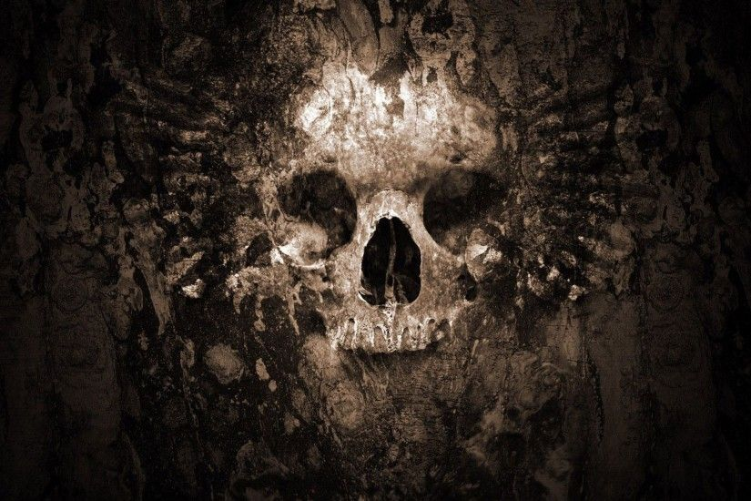 HD Skull Wallpapers Wallpaper 1920×1200 Skull Wallpaper Hd (53 Wallpapers)  | Adorable