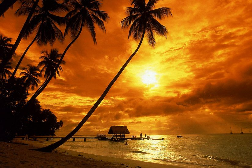 Tropical sunset wallpaper - Beach Wallpapers
