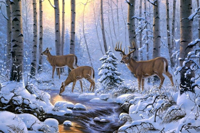 <b>Mule Deer Wallpapers</b> HD Download