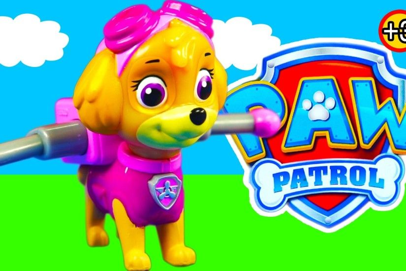 Paw Patrol Skye Action Pack Pup and Badge Kids Toy Review [Nick jr] [Spin  Master] - YouTube