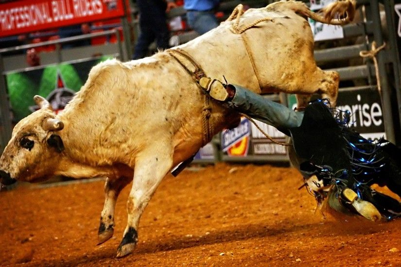 ... bull riding bullrider rodeo western cowboy extreme cow (10) wallpaper  ...