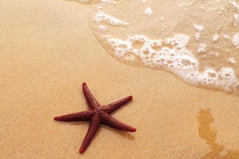 Sand Bottles Starfish Wallpaper HD #2936 Wallpaper | awshdwallpapers.
