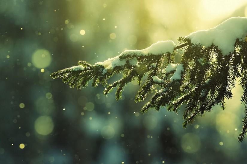 download free snow background 1920x1200 for retina