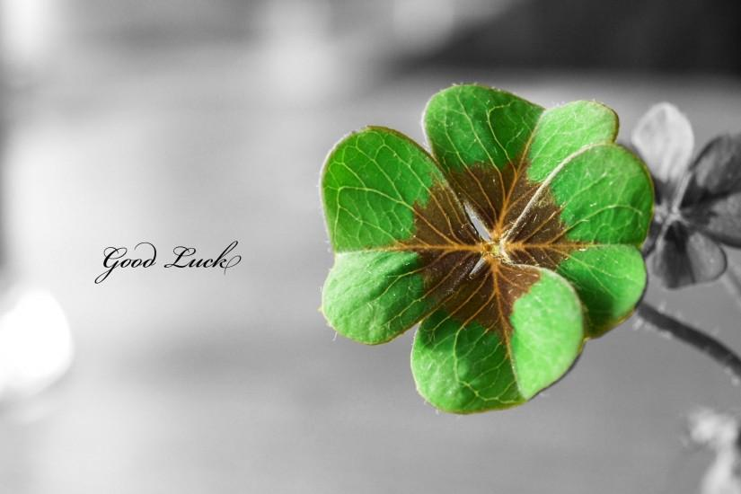 widescreen st patricks day wallpaper 1920x1200 for hd