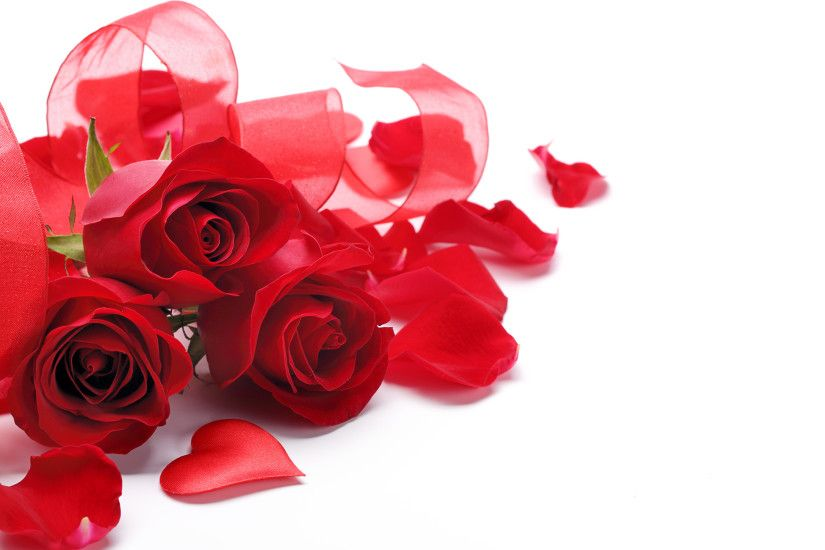 Pictures Heart Red Roses Petals Flowers Three 3 White background 2880x1800