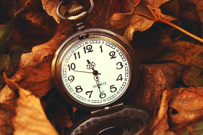 Download Wallpaper 3840x2160 Leaves, Time, Macro, Nature, Hours 4K .