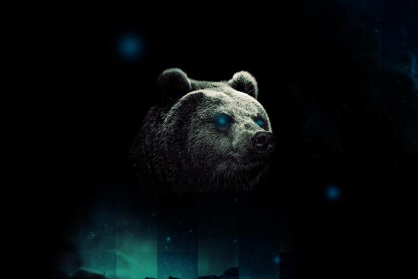 bear wallpaper 1920x1080 for android 50