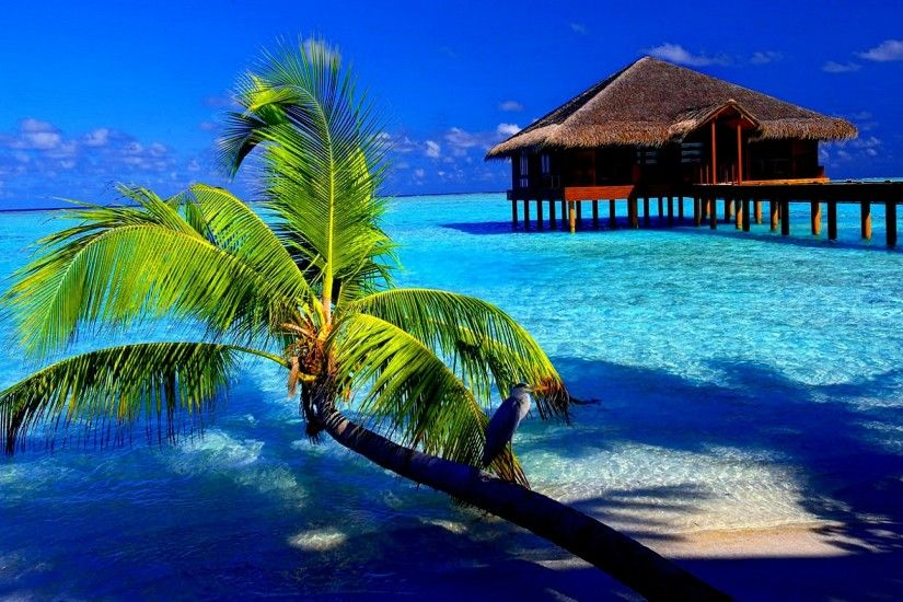 Tropical Island Wallpaper Free - WallpaperSafari Beautiful Tropical Islands  Desktop Wallpaper - WallpaperSafari ...