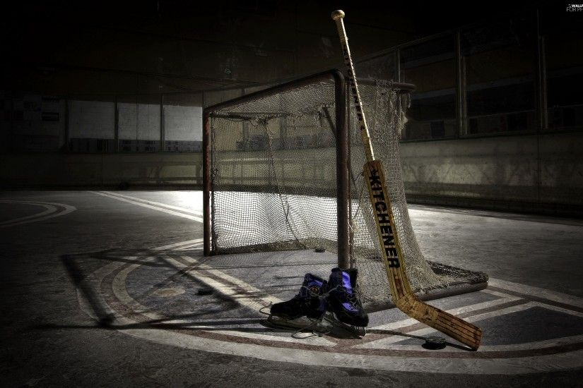 Skates, gate, hockey, Stick, ice rink