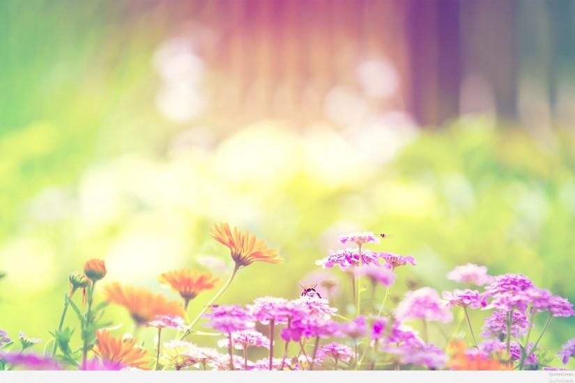 HD-Colorful-Spring-Wallpaper-1
