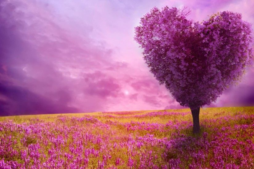 Top 10 HD Spring Season Desktop Backgrounds/