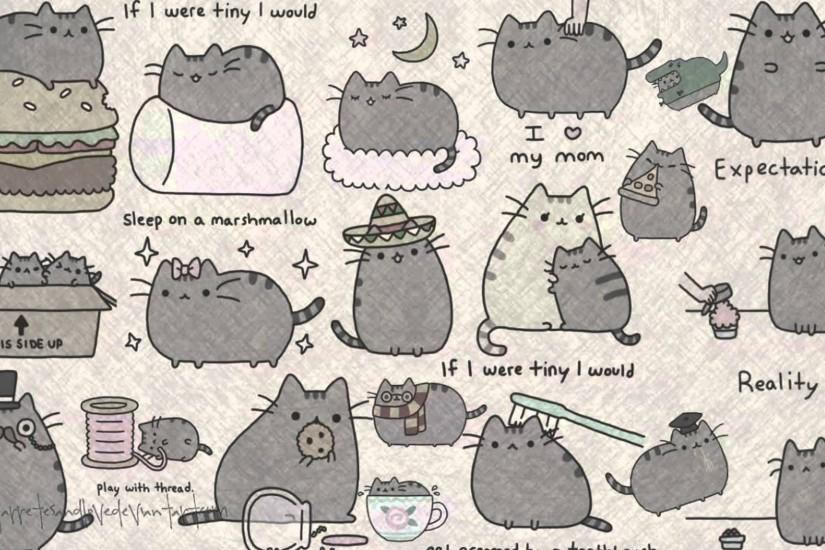 large pusheen wallpaper 1920x1080 ipad