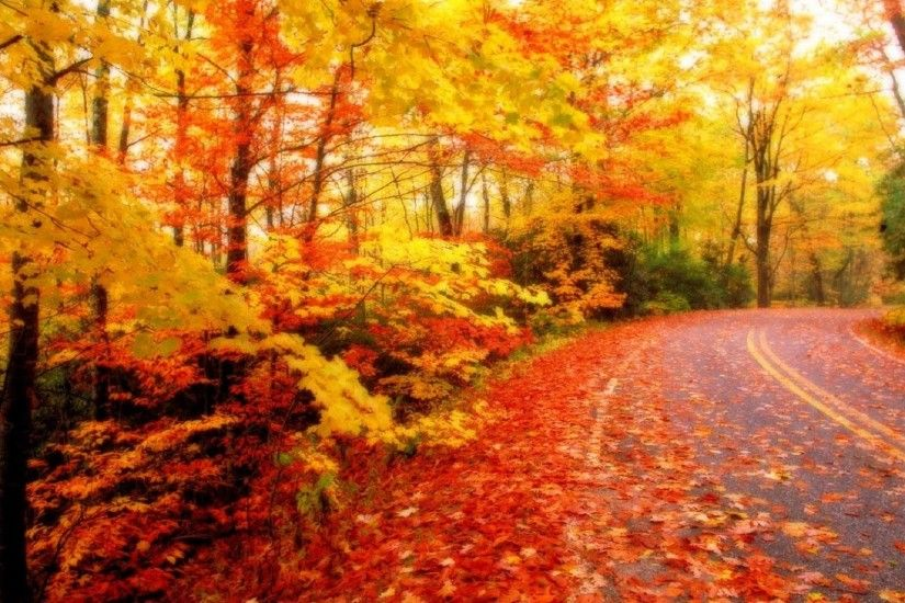 Autumn & Fall Season HD Wallpapers For Download