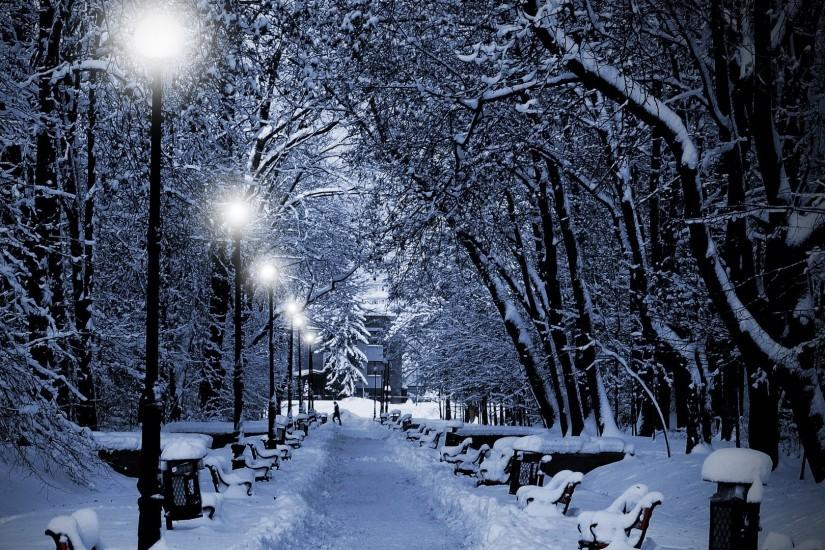 Lamps, Light, Snow, Benches, Person, Path Full HD .