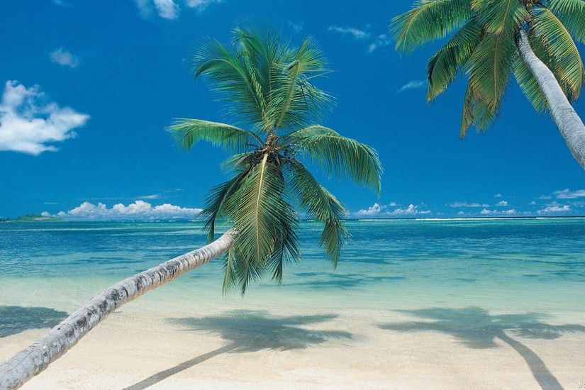 of pictures of tropical paradise beaches | High Resolution Wallpaper .