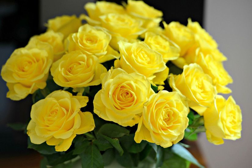 Home/Collections/Roses/Yellow Rose Vase. ; 