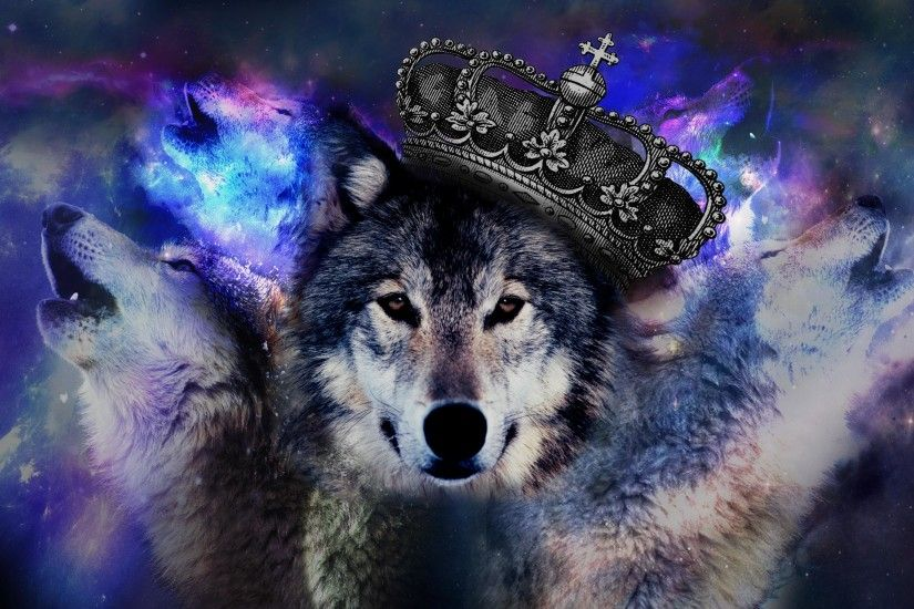 Wolf. Home · Wallpaper; Wolf