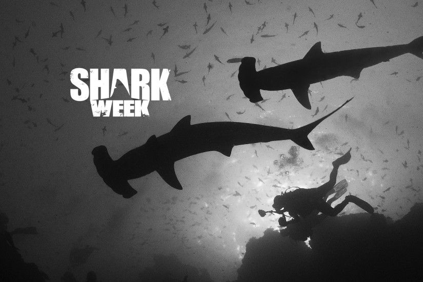 Discovery Channel Does SHARK WEEK RIGHT: Night Five of 2015 Edition |  VeryHelpful.net