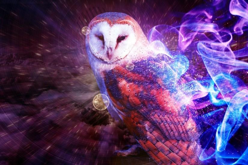 download owl wallpaper 1920x1200 ipad retina