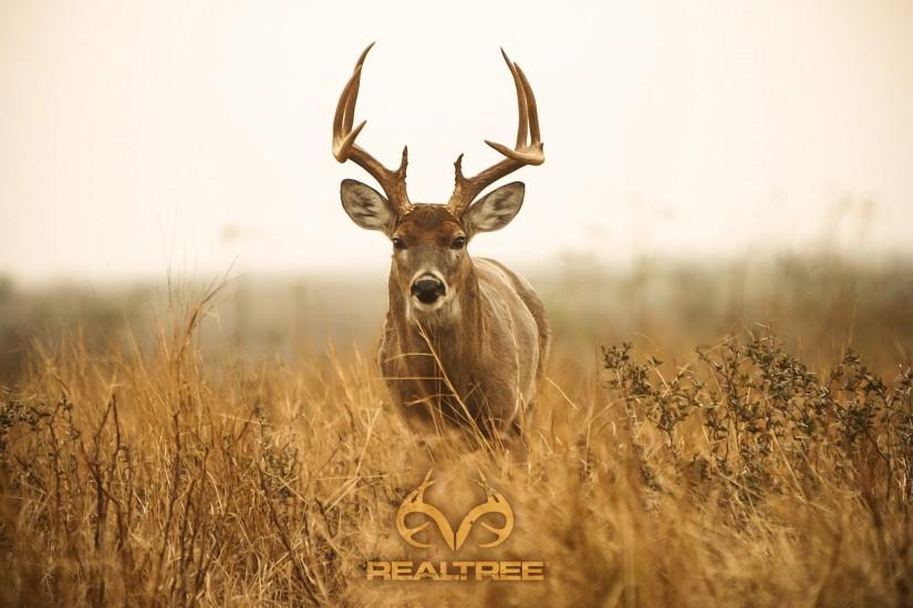 Realtree Camo HD Wallpaper.