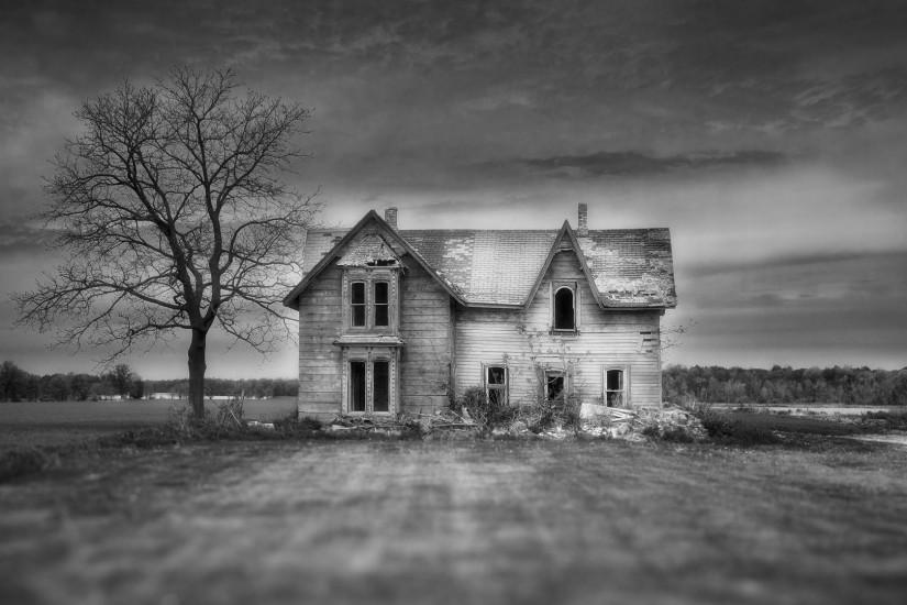 Houses - Haunted House Focus Horror Houses Abandoned Fields Tree Black  White Wide Resolution for HD
