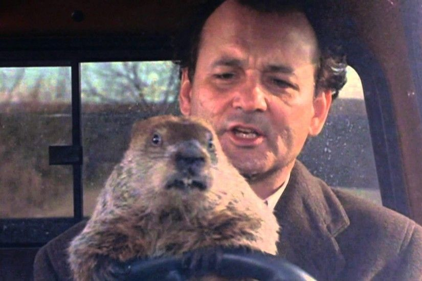 BILL MURRAY'S GROUNDHOG DAY 2016!