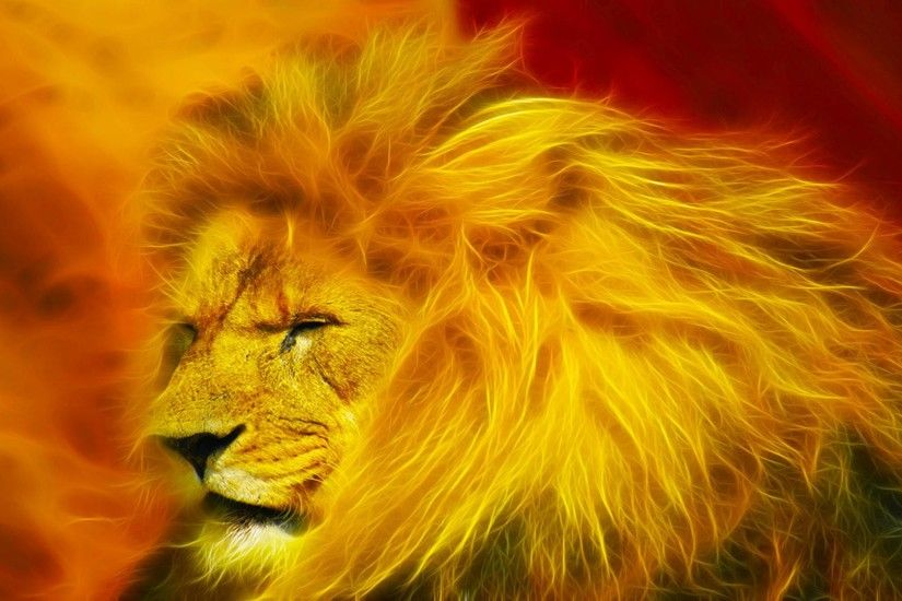 ... HD Lion Wallpapers Group (83 ) ...