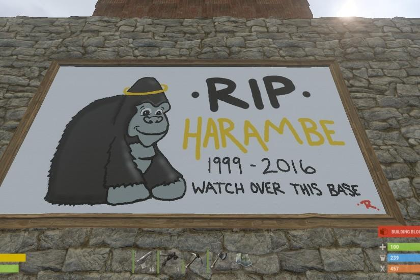 download free harambe wallpaper 1920x1080 windows