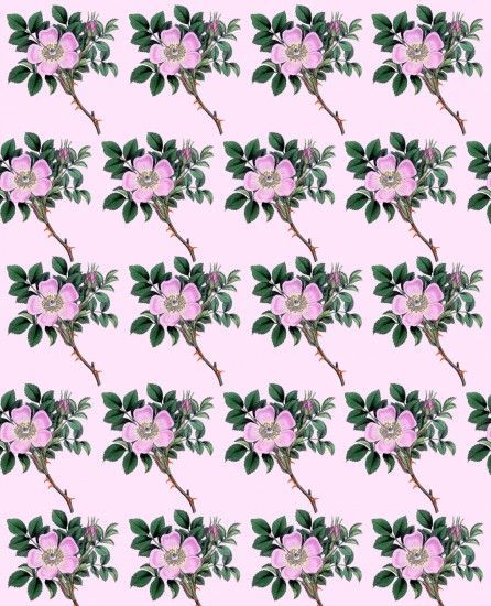 Vintage Floral Flowers Background