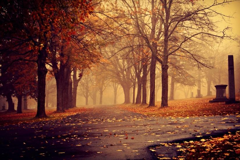 fall background 1920x1200 download