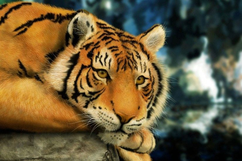 Full HD p Tiger Wallpapers HD, Desktop Backgrounds 1920×1200