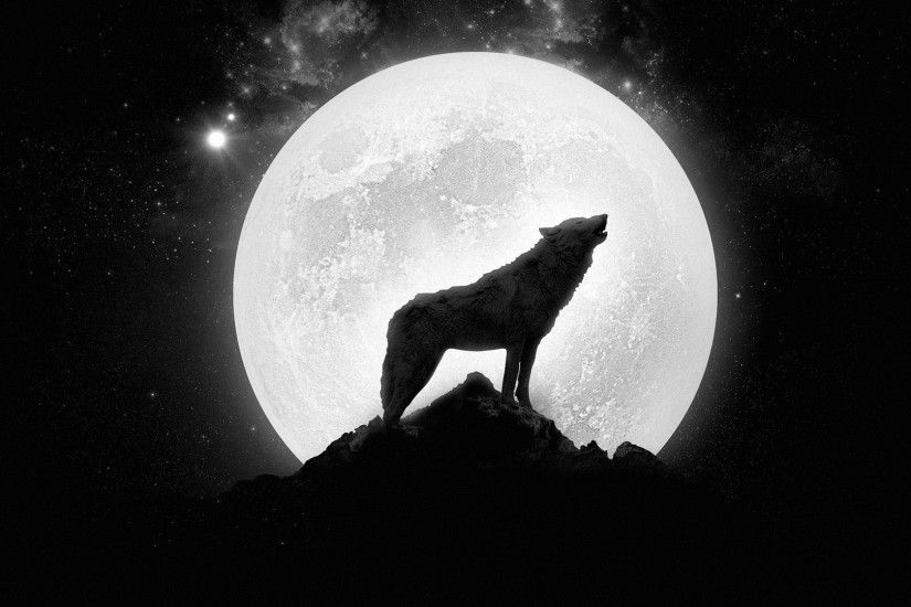Wolf Howling At The Full Moon ...