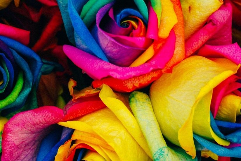 Rainbow Roses - Tap to see more color-full wallpapers! - @mobile9